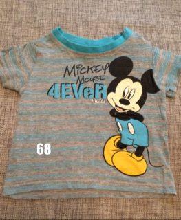 59f67dcfe87c5-mickey-mouse-kurzarm-shirt-größe-68-1-263x320.jpg
